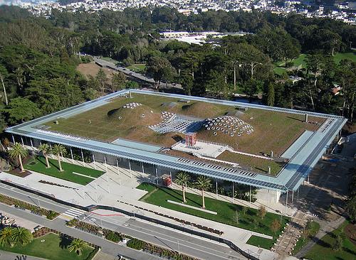 california-academy-of-sciences