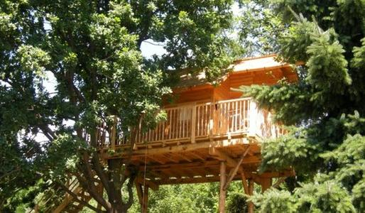 A view of the tree house