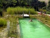 natural-pools-13