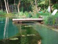 natural-pools-18