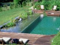 natural-pools-2