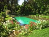 natural-pools