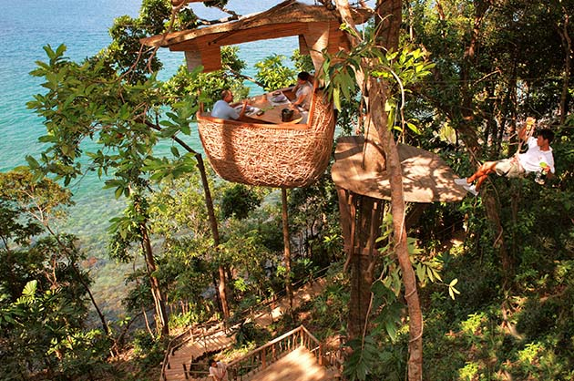 Treetop pod