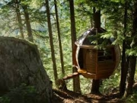 The Hemloft tree house