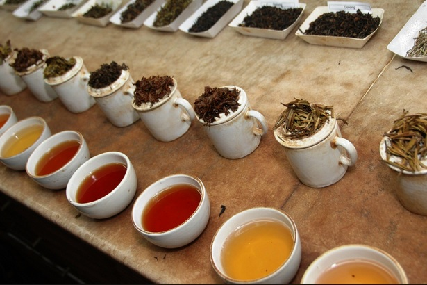 different types of tea