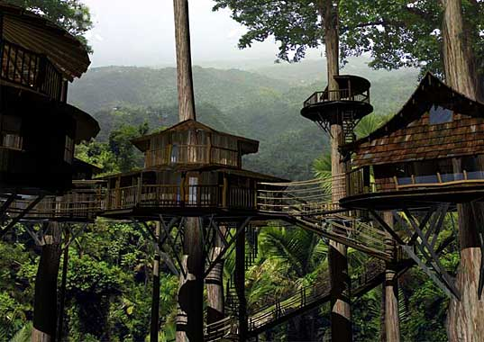 tree houses finca bellavista