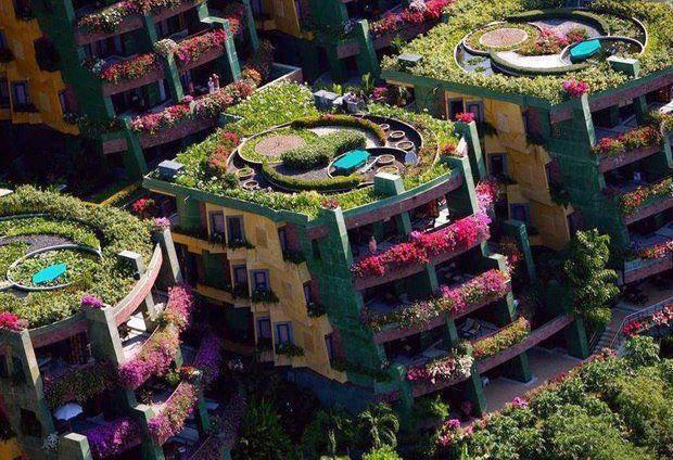 flowered houses Thailand
