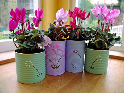 tin cans flower pots