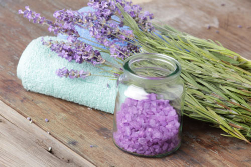 How to get rid of flies naturally:  Lavender