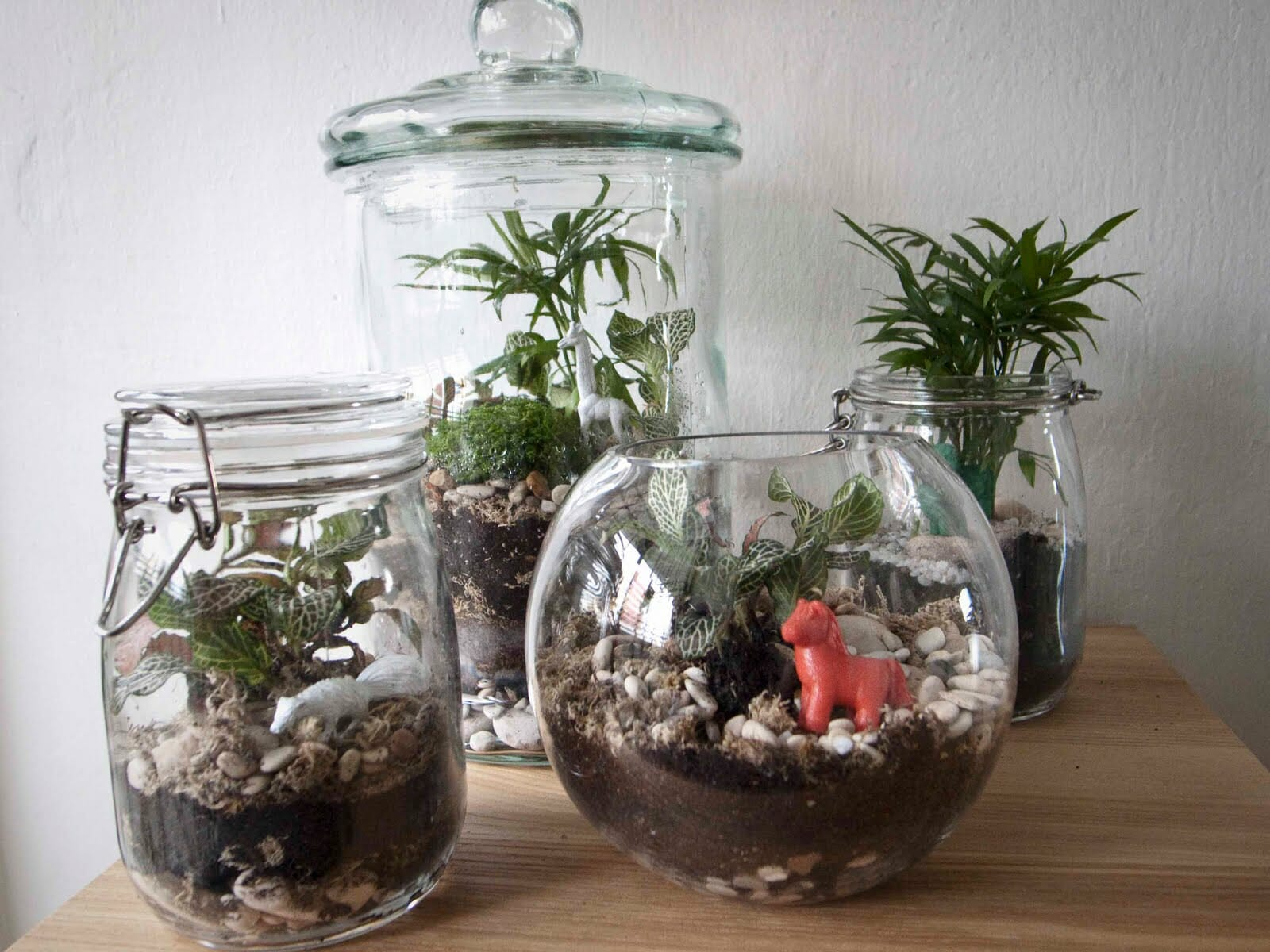 how to make a terrarium a step by step diy tutorial whatagreenlife. Black Bedroom Furniture Sets. Home Design Ideas