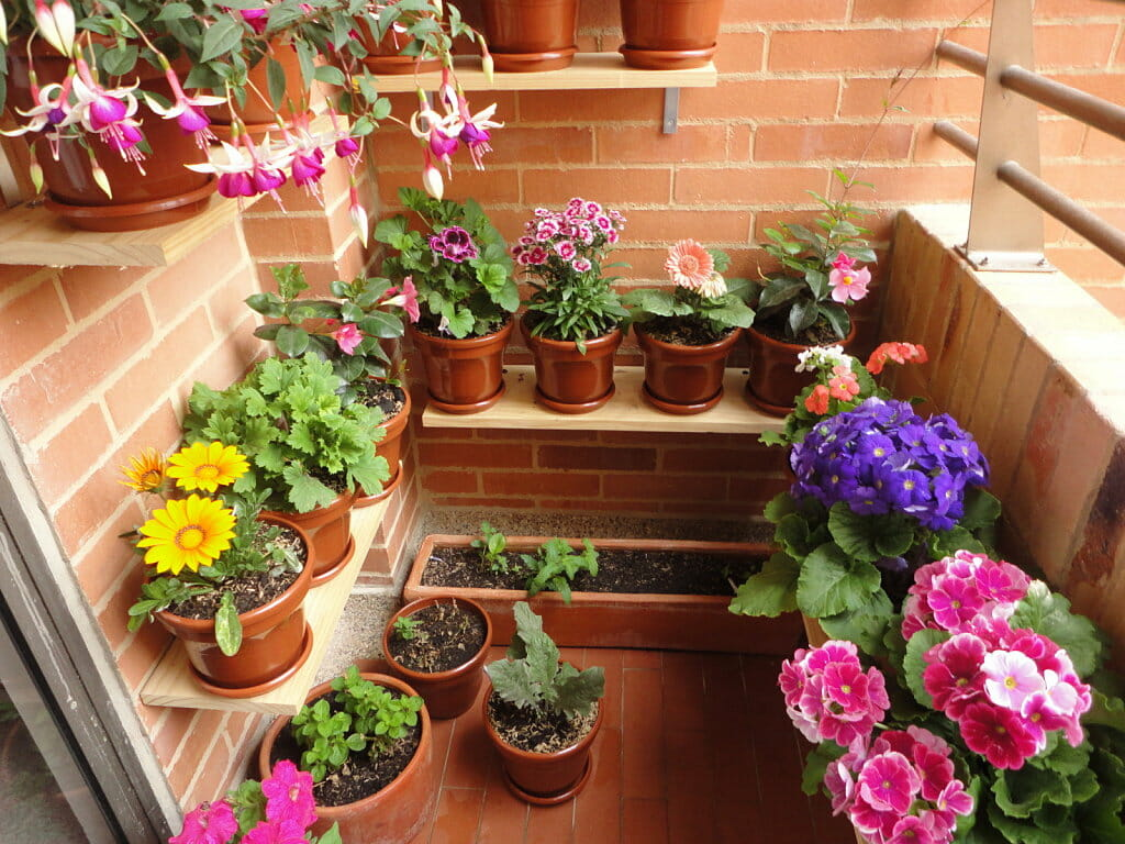 The easy guide to balcony flowers for Balcony flowers