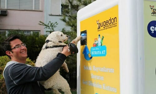 Pugedon is an automated machine, providing food and water for stray animals in exchange for recyclable bottles